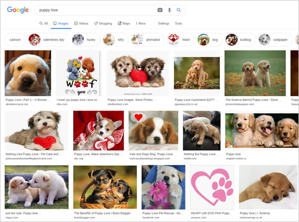 """Google images search results for keyphrase """"puppy love""""."""