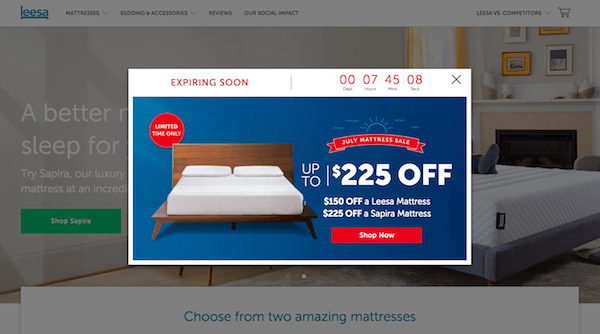 Design the First Page of Your eCommerce Site Leesa Timer
