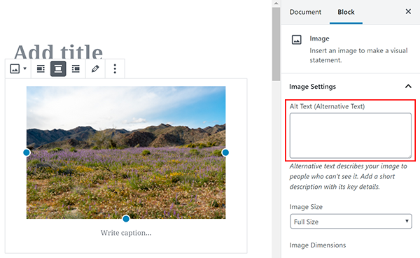 Screenshot where to add alt text in image block