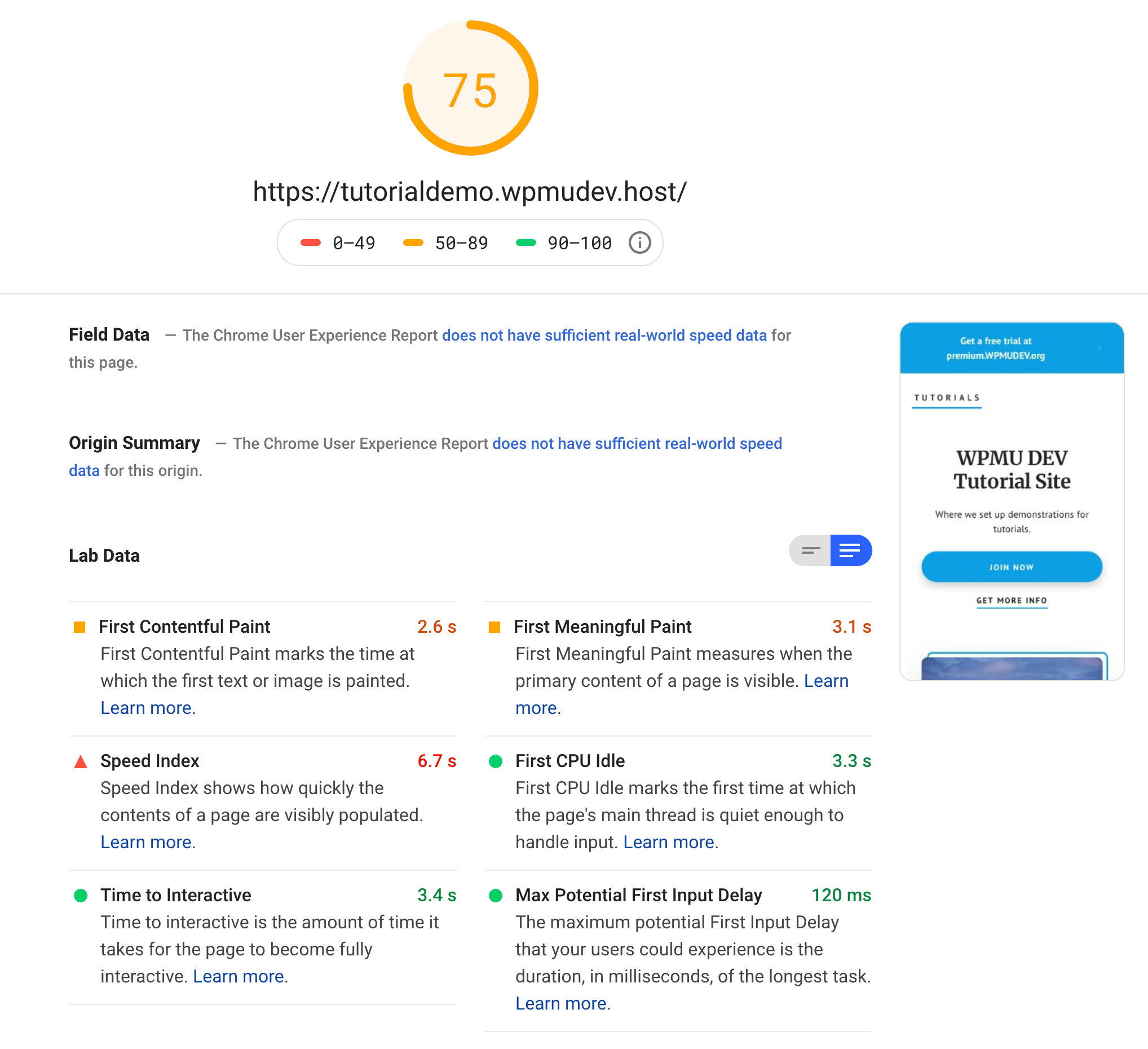 Screenshot of Google PageSpeed Insights Results Page